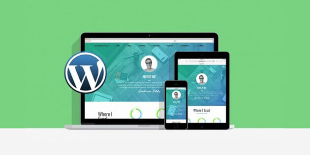 stacksocial wordpress bundle