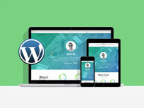 wordpress bundle- stacksocial